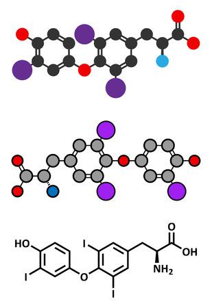 hipofisis: Triyodotironina (T3, liotironina) mol�cula de la hormona tiroidea. Hormona de la gl�ndula pituitaria. Tambi�n se utiliza como medicamento para tratar el hipotiroidismo. Renderizados en 2D estilizadas y f�rmula esquel�tico convencional.