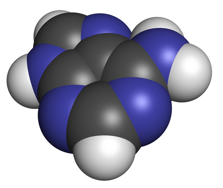 nucleotide: Adenine (A, Adenine) purine nucleobase molecule. Base present in DNA and RNA. Atoms are represented as spheres with conventional color coding: hydrogen (white), carbon (grey), nitrogen (blue). Stock Photo