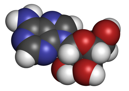 purine: Adenosine (Ado) purine nucleoside molecule. Important component of ATP, ADP, cAMP and RNA. Also used as drug. Atoms are represented as spheres with conventional color coding: hydrogen (white), carbon (grey), oxygen (red), nitrogen (blue). Stock Photo