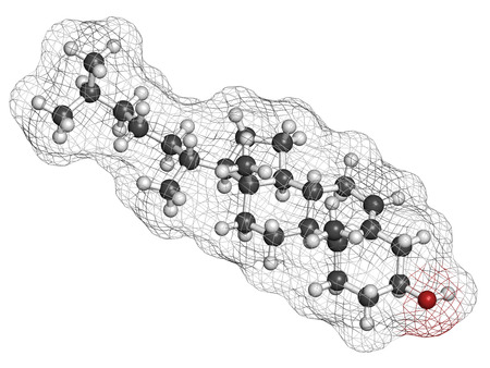 Cholesterol molecule. Essential component of cell membranes and precursor of steroid hormones, bile acids and vitamin D. Atoms are represented as spheres with conventional color coding: hydrogen (white), carbon (grey), oxygen (red). photo