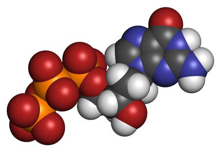 nucleoside: Deoxyguanosine triphosphate (dGTP) nucleotide molecule. DNA building block. Atoms are represented as spheres with conventional color coding: hydrogen (white), carbon (grey), nitrogen (blue), oxygen (red), phosphorus (orange).