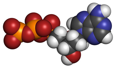 nucleoside: Deoxyadenosine triphosphate (dATP) nucleotide molecule. DNA building block. Atoms are represented as spheres with conventional color coding: hydrogen (white), carbon (grey), nitrogen (blue), oxygen (red), phosphorus (orange). Stock Photo