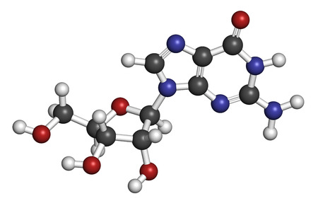 Guanosine purine nucleoside molecule. Important component of GTP, GDP, cGMP, GMP and RNA. Atoms are represented as spheres with conventional color coding: hydrogen (white), carbon (grey), oxygen (red), nitrogen (blue).