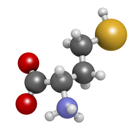 biomarker: Homocysteine (Hcy) biomarker molecule. Increased levels indicate elevated risk of cardiovascular disease. Atoms are represented as spheres with conventional color coding: hydrogen (white), carbon (grey), nitrogen (blue), oxygen (red), sulphur (yellow).