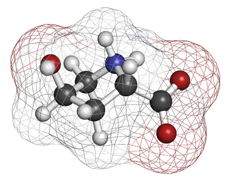 proline: Hydroxyproline (Hyp) amino acid. Essential component of collagen. Atoms are represented as spheres with conventional color coding: hydrogen (white), carbon (grey), nitrogen (blue), oxygen (red). Stock Photo