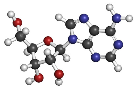 Adenosine (Ado) purine nucleoside molecule. Important component of ATP, ADP, cAMP and RNA. Also used as drug. Atoms are represented as spheres with conventional color coding: hydrogen (white), carbon (grey), oxygen (red), nitrogen (blue). Stock Photo