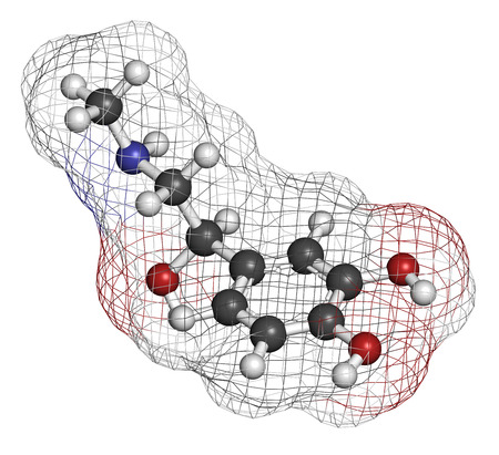 adrenaline: Adrenaline (adrenalin, epinephrine) neurotransmitter molecule. Used as drug in treatment of anaphylaxis Atoms are represented as spheres with conventional color coding: hydrogen (white), carbon (grey), oxygen (red), nitrogen (blue).