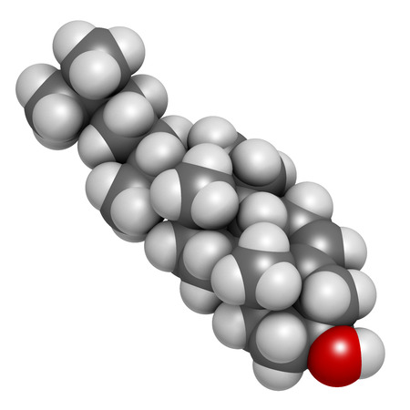 membranes: Cholesterol molecule. Essential component of cell membranes and precursor of steroid hormones, bile acids and vitamin D. Atoms are represented as spheres with conventional color coding: hydrogen (white), carbon (grey), oxygen (red).