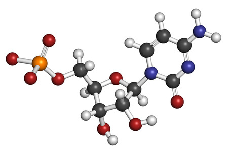 monophosphate: Cytidine monophosphate (CMP, cytidylate) RNA building block molecule. Atoms are represented as spheres with conventional color coding: hydrogen (white), carbon (grey), nitrogen (blue), oxygen (red), phosphate (orange). Stock Photo
