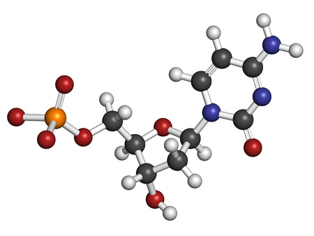 nucleotide: Deoxycytidine monophosphate (dCMP) nucleotide molecule. DNA building block. Atoms are represented as spheres with conventional color coding: hydrogen (white), carbon (grey), nitrogen (blue), oxygen (red), phosphorus (orange).
