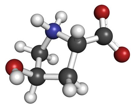 hydrogen: Hidroxiprolina (Hyp) de amino�cidos. Componente esencial de col�geno. Los �tomos se representan como esferas con codificaci�n de colores convencionales: hidr�geno (blanco), carbono (gris), nitr�geno (azul), ox�geno (roja).