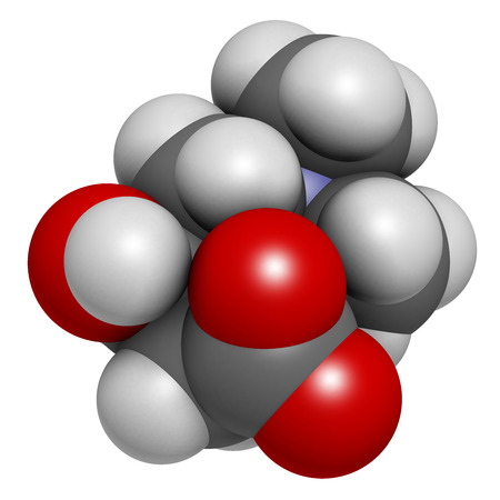 Carnitine molecule, chemical structure. Often found in nutritional supplements. Natural food sources include red meat and dairy products. Atoms are represented as spheres with conventional color coding: hydrogen (white), carbon (grey), nitrogen (blue), ox Stock Photo