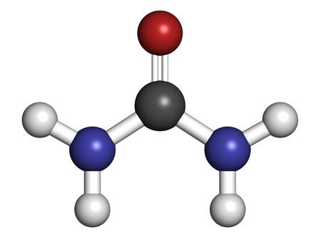 amide: Urea (carbamide) molecule. Used in cosmetics, fertilizer; present in urine. Atoms are represented as spheres with conventional color coding: hydrogen (white), carbon (grey), oxygen (red), nitrogen (blue). Stock Photo