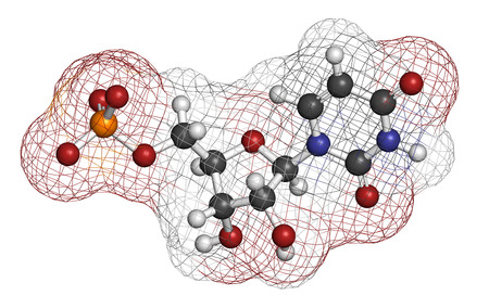 nucleotide: Uridine monophosphate (UMP, uridylic acid) nucleotide molecule. Building block of RNA. Atoms are represented as spheres with conventional color coding: hydrogen (white), carbon (grey), oxygen (red), nitrogen (blue), phosphorus (orange). Stock Photo