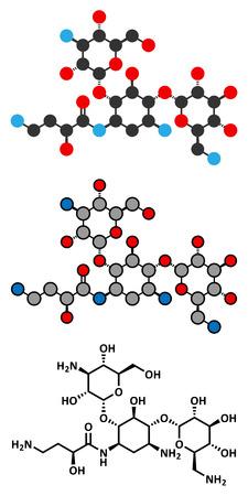 ribosome: Amikacin aminoglycoside antibiotic molecule.