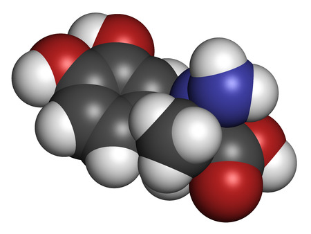 parkinson's disease: Carbidopa Parkinsons Disease drug. Prevents peripheral breakdown of levodopa, allowing more L-DOPA to reach the brain. Atoms are represented as spheres with conventional color coding: hydrogen (white), carbon (grey), oxygen (red), nitrogen (blue). Stock Photo