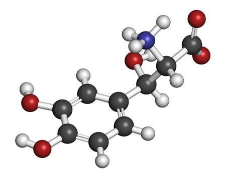 Droxidopa (L-DOPS) hypotension (low blood pressure) drug molecule. Atoms are represented as spheres with conventional color coding: hydrogen (white), carbon (grey), oxygen (red), nitrogen (blue).