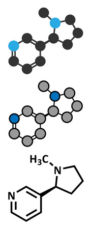 addictive: Nicotine tobacco stimulant molecule. Main addictive component in cigarette smoke. Atoms are represented as spheres with conventional color coding: hydrogen (white), carbon (grey), nitrogen (blue).