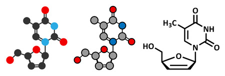 nucleoside: Stavudine (d4T) HIV drug molecule. Thymidine analog that blocks reverse-transcriptase. Stylized 2D rendering and conventional skeletal formula.