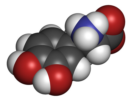 L-DOPA (levodopa) Parkinsons disease drug molecule. Atoms are represented as spheres with conventional color coding: hydrogen (white), carbon (grey), oxygen (red), nitrogen (blue).