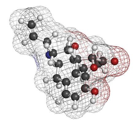 túladagolás: A naloxon-opioid receptor antagonista. Kábítószer használják kezelésére opioid túladagolás. Atomok képviseletében a gömbök és a hagyományos színkód: hidrogén (fehér), a szén (szürke), az oxigén (piros), a nitrogén (kék).