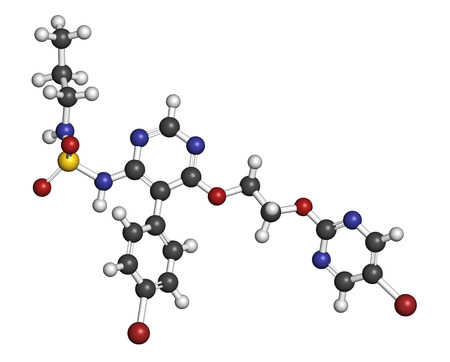 endothelial: Macitentan pulmonary arterial hypertension drug molecule. Belongs to Endothelin Receptor Antagonist class. Atoms are represented as spheres with conventional color coding: hydrogen (white), carbon (grey), oxygen (red), nitrogen (blue), sulfur (yellow), br Stock Photo