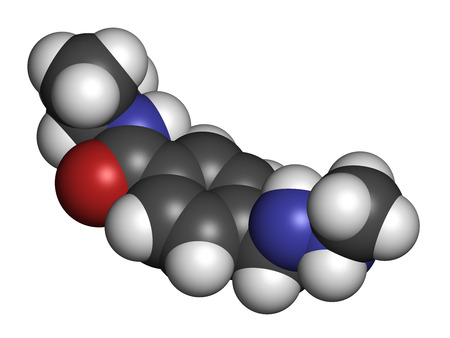 lymphoma: Procarbazine cancer drug molecule. Alkylating agent used in treatment of Hodgkins lymphoma and glioblastoma brain cancer. Atoms are represented as spheres with conventional color coding: hydrogen (white), carbon (grey), oxygen (red), nitrogen (blue).
