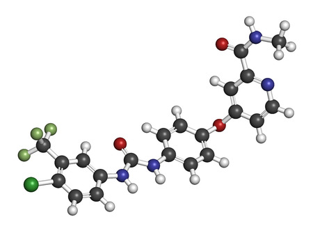 kinase: Sorafenib cancer drug molecule. Tyrosine kinase inhibitor (TKI). Atoms are represented as spheres with conventional color coding: hydrogen (white), carbon (grey), oxygen (red), nitrogen (blue), fluorine (light green), chlorine (green).