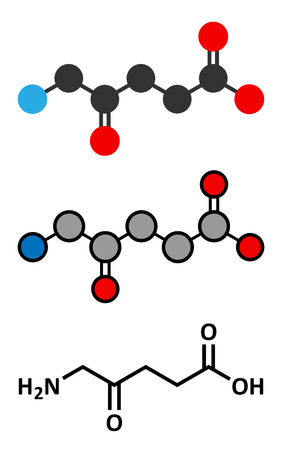 d-aminolevulinic acid (ALA) drug molecule. Used in diagnosis and treatment (photodynamic therapy) of cancer. Conventional skeletal formula and stylized representations. Vector