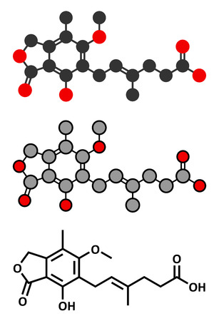 Mycophenolate (mycophenolic acid) immunosuppressive drug molecule. Used to prevent transplant rejection and in treatment of autoimmune disease. Conventional skeletal formula and stylized representations.