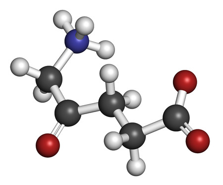 synthesis: d-aminolevulinic acid (ALA) drug molecule. Used in diagnosis and treatment (photodynamic therapy) of cancer. Atoms are represented as spheres with conventional color coding: hydrogen (white), carbon (grey), oxygen (red), nitrogen (blue).