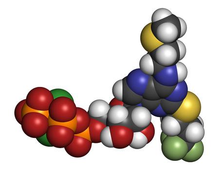 phosphorus: Cangrelor antiplatelet drug molecule. Atoms are represented as spheres with conventional color coding: hydrogen (white), carbon (grey), nitrogen (blue), sulfur (yellow), phosphorus (orange), chlorine (green), fluorine (llight green). Stock Photo