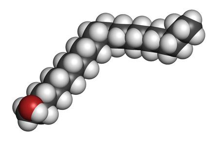 sores: Docosanol (alcool beenilico) molecola farmaco antivirale. Utilizzato nel trattamento di herpes labiale (herpes simplex virus). Gli atomi sono rappresentati come sfere con codifica a colori convenzionali: l'idrogeno (bianco), di carbonio (grigio), ossigeno (rosso).