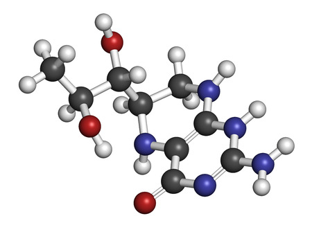 Tetrahydrobiopterin (sapropterin) phenylketonuria drug molecule. Cofactor to a number of aromatic amino acid hydroxylase enzymes. Atoms are represented as spheres with conventional color coding: hydrogen (white), carbon (grey), oxygen (red), nitrogen (blu