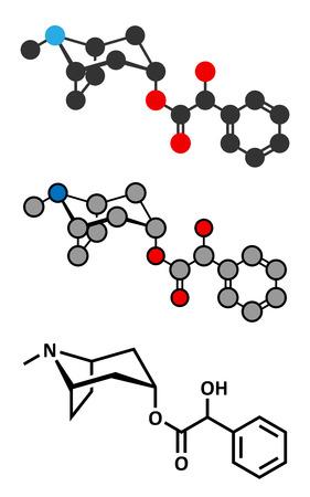 antidote: Atropine deadly nightshade (Atropa belladonna) alkaloid molecule. Medicinal drug and poison also found in Jimson weed (Datura stramonium) and mandrake (Mandragora officinarum). Conventional skeletal formula and stylized representations.