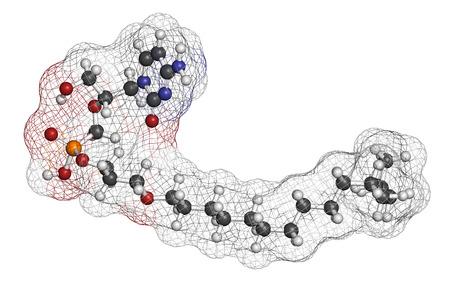 antiviral: Brincidofovir antiviral drug molecule. Prodrug of cidofovir. Atoms are represented as spheres with conventional color coding: hydrogen (white), carbon (grey), oxygen (red), nitrogen (blue), phosphorus (orange).