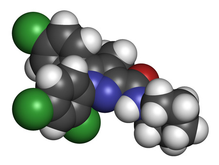 cannabinoid: Rimonabant obesity drug molecule (withdrawn). Atoms are represented as spheres with conventional color coding: hydrogen (white), carbon (grey), oxygen (red), nitrogen (blue), chlorine (green).