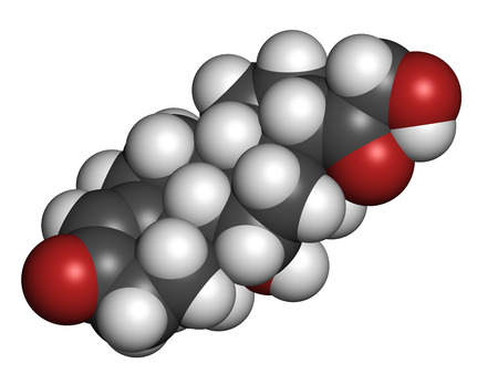 adrenal: Aldosterone mineralocorticoid hormone, produced by the adrenal gland. Atoms are represented as spheres with conventional color coding: hydrogen (white), carbon (grey), oxygen (red).