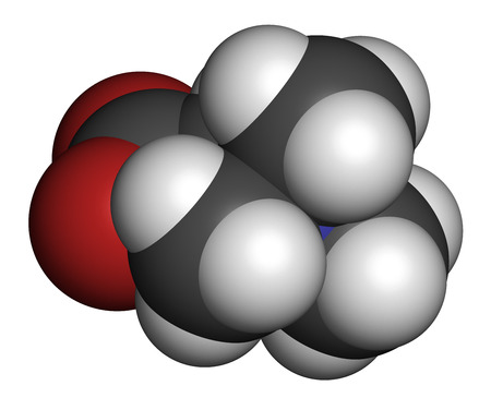 glycine: Betaine (glycine betaine, trimethylglycine) molecule. Originally found in sugar beet (Beta vulgaris). Atoms are represented as spheres with conventional color coding: hydrogen (white), carbon (grey), oxygen (red), nitrogen (blue).