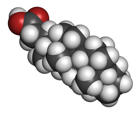 Bile acid (cholic acid, cholate) molecule. Cholic acid is the main bile acid in humans. Atoms are represented as spheres with conventional color coding: hydrogen (white), carbon (grey), oxygen (red). photo