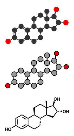 estrogen: Estriol (oestriol) human estrogen hormone molecule. Conventional skeletal formula and stylized representations.