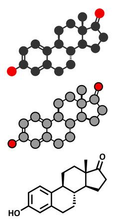 representations: Estrone (oestrone) human estrogen hormone molecule. Conventional skeletal formula and stylized representations.