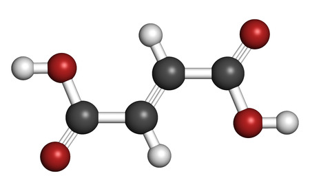 Fumaric acid molecule. Found in bolete mushrooms, lichen and iceland moss and used as food additive. Atoms are represented as spheres with conventional color coding: hydrogen (white), carbon (grey), oxygen (red).