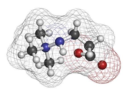 angina: Meldonium antiisch�mische Arzneimittelmolek�ls. Verwendet in der Behandlung von Angina pectoris und Myokardinfarkt. Wasserstoff (wei�), Kohlenstoff (grau), Sauerstoff (rot), Stickstoff (blau): Atome als Kugeln mit herk�mmlichen Farbkodierung dargestellt.