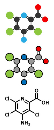 representations: Picloram herbicide molecule. Conventional skeletal formula and stylized representations.