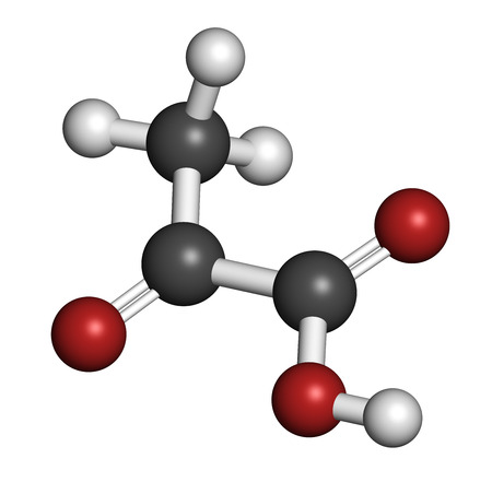 Pyruvic acid (pyruvate) molecule. Important intermediate in a number of biochemical processes. Atoms are represented as spheres with conventional color coding: hydrogen (white), carbon (grey), oxygen (red).