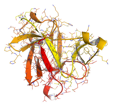 receptor: Anakinra rheumatoid arthritis drug, molecular structure. Recombinant form of human interleukin-1 (IL-1) receptor antagonist protein. Cartoon + line model; N-to-C gradient coloring. Stock Photo