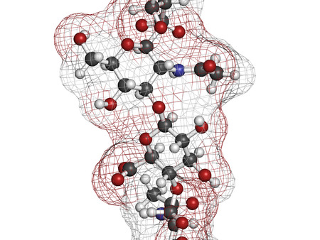 Hyaluronan (hyaluronic acid, hyaluronate) glycosaminoglycan molecule, short fragment. Part of extracellular matrix. Used as tumor marker. Used in treatment of osteoarthritis and as a cosmetic filler to treat wrinkles. Atoms shown as color-coded spheres +