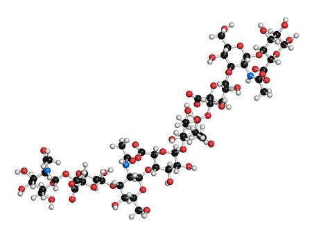 acido: Ácido hialurónico (ácido hialurónico, hialuronato) molécula glicosaminoglicanos, fragmento corto. Parte de la matriz extracelular. Se utiliza como marcador tumoral. Se utiliza en el tratamiento de la osteoartritis y como relleno estético para tratar las arrugas. Los átomos que se muestran como esferas con códigos de colores.