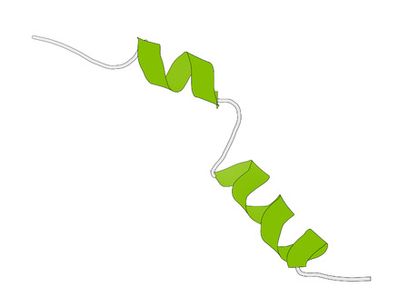 glucagon: Liraglutide peptide drug molecule. Agonist of the glucagon-like peptide-1 receptor used in treatment of diabetes and obesity. Cartoon model, secondary structure coloring: alpha-helices green. Stock Photo